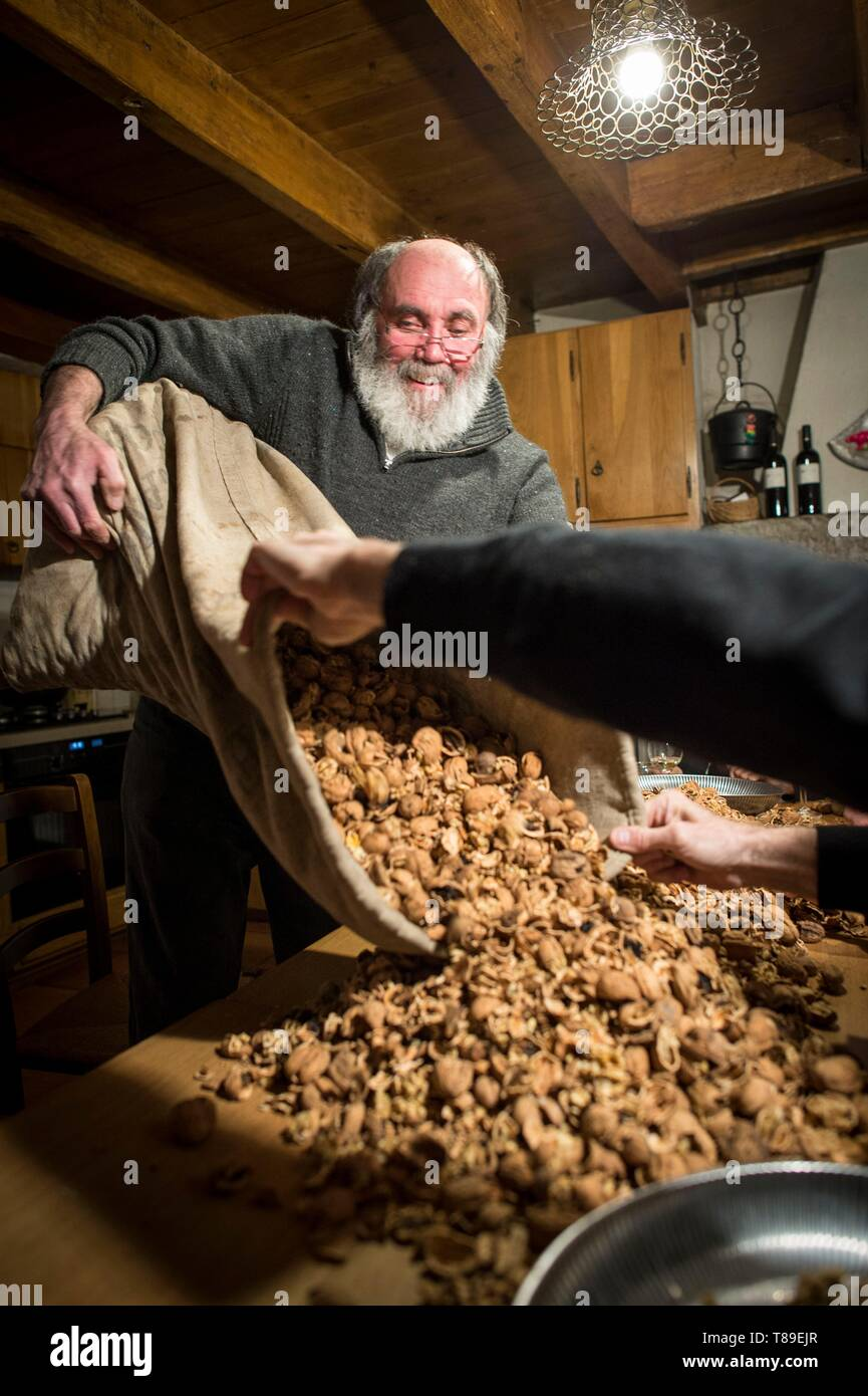 France, Haute Savoie, Seyssel, Berger oil mill, the broken nuts are kept in jute sacks and then poured on the table for sorting - Stock Image