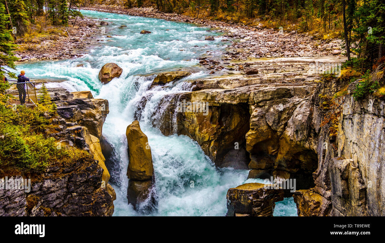 The famous wild waters of the Sunwapta Waterfalls in Jasper National Park in the Canadian Rockies in Western Canada - Stock Image
