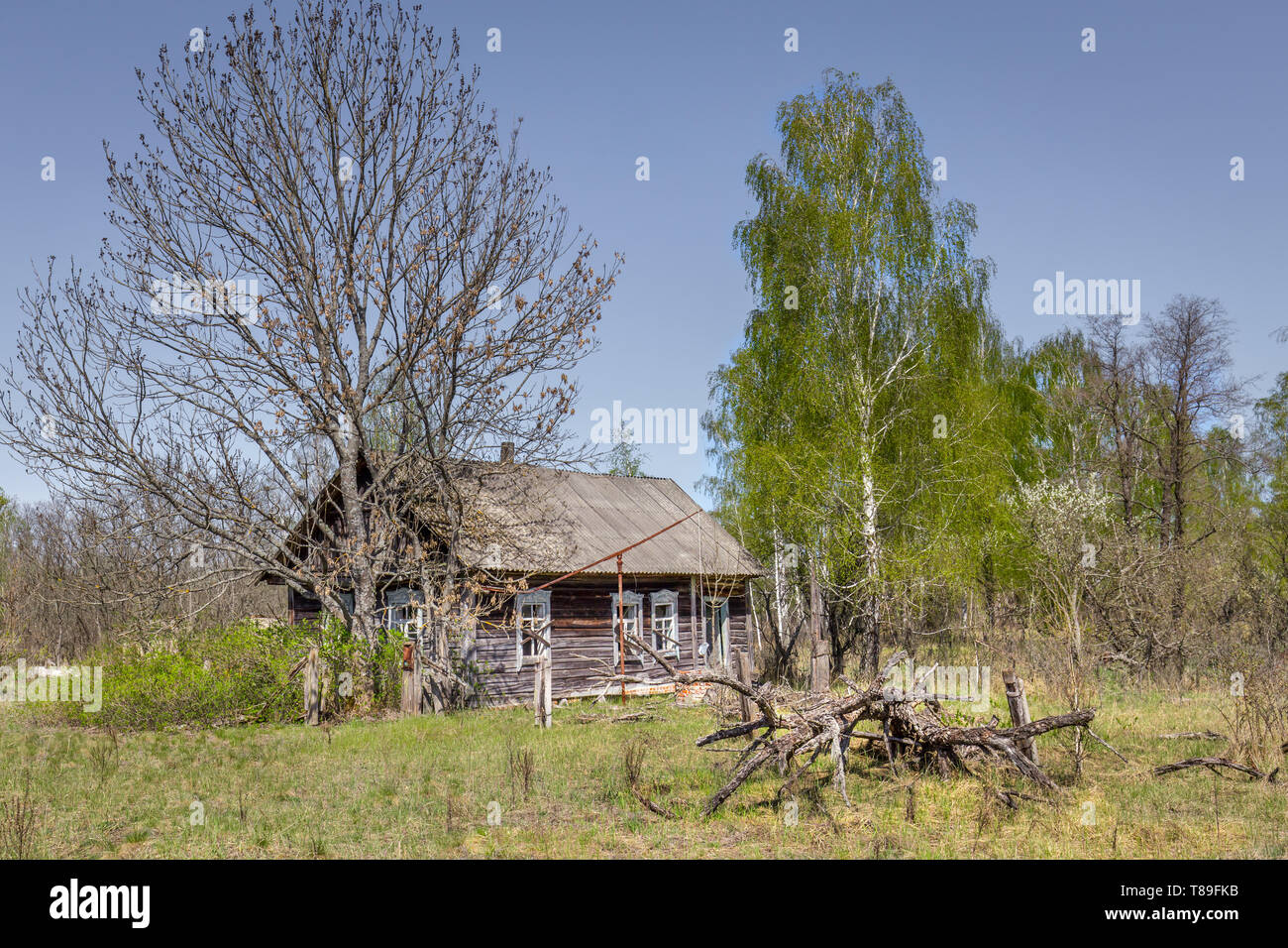 Abandoned little house in Belarus Chernobyl exclusion zone, recently opened for the public from april 2019. - Stock Image