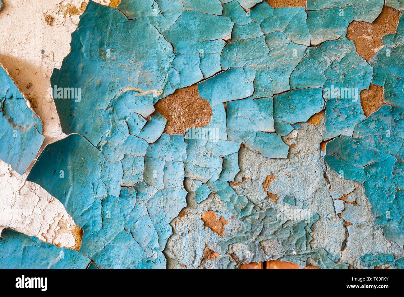 Texture of blue peeling paint on an old wall in an abandoned house - Stock Image