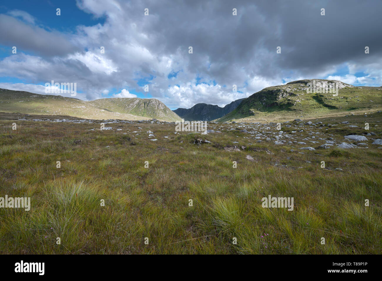 The Poisoned Glen, at the foot of Mount Errigal in Dunlewey, Donegal, Ireland - Stock Image