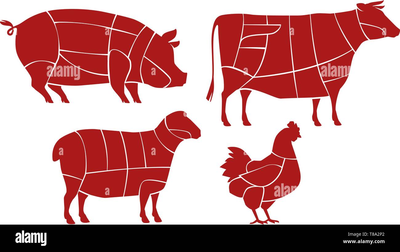 Meat cutting scheme. Butcher shop concept. Farm animals vector Stock Vector