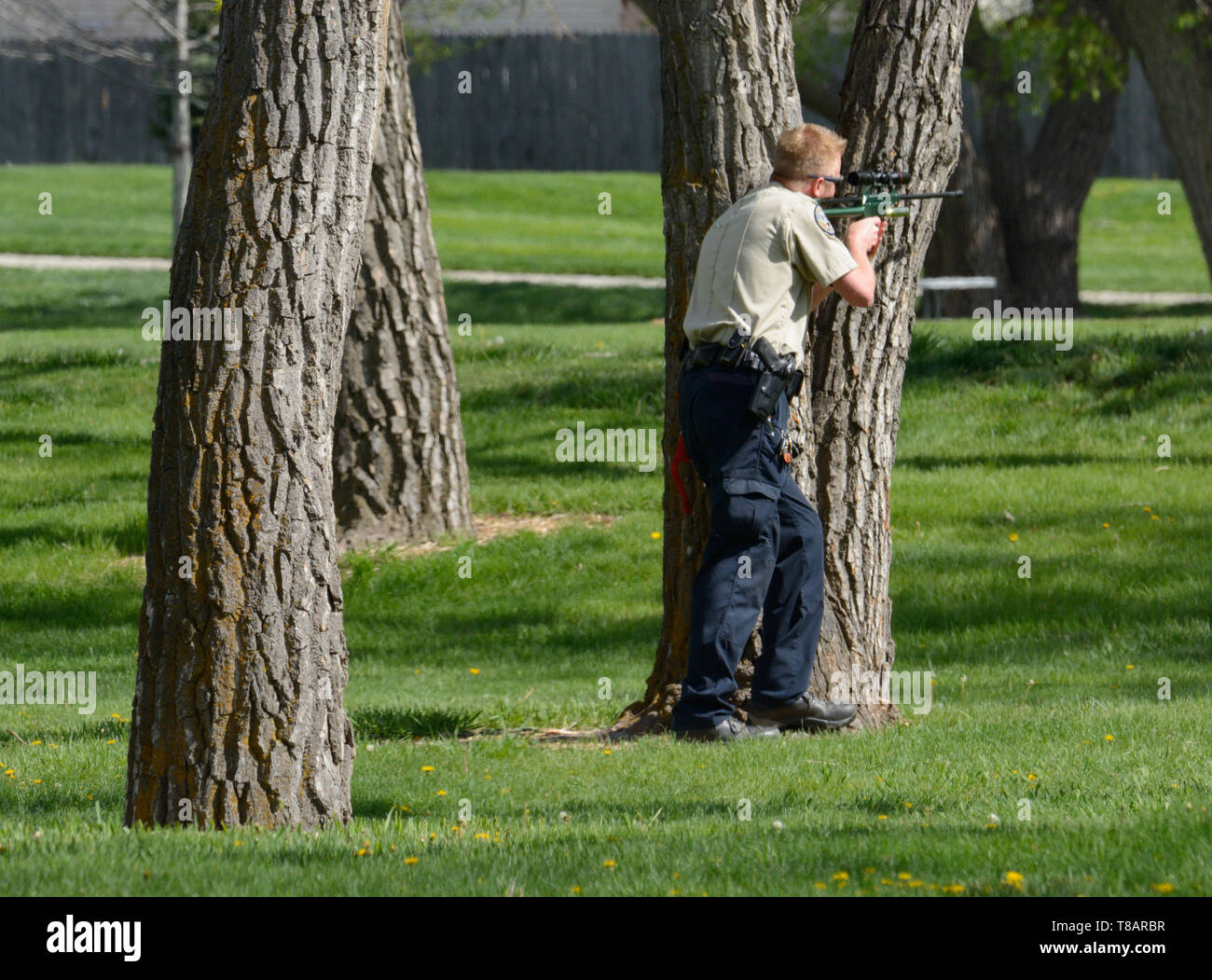 Tranquilize Stock Photos & Tranquilize Stock Images - Alamy