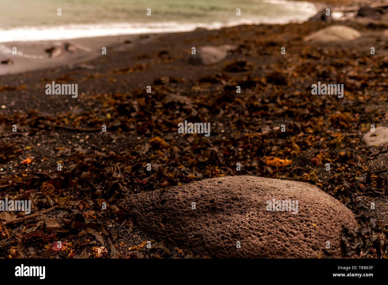 shallow dwpth of field over rock in the black send sea, Jeju, South Korea - Stock Image