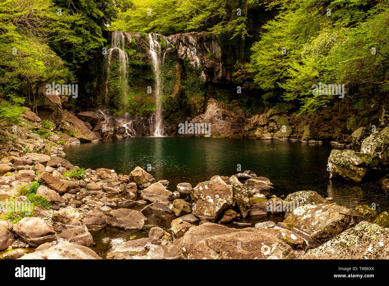 landscape view with trees and waterfall, Jeju, South Korea - Stock Image