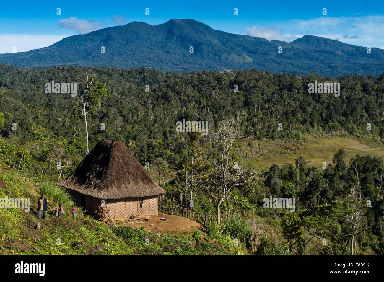 Papua New Guinea, Hela Province, Hulis tribe, Ambua region Stock Photo