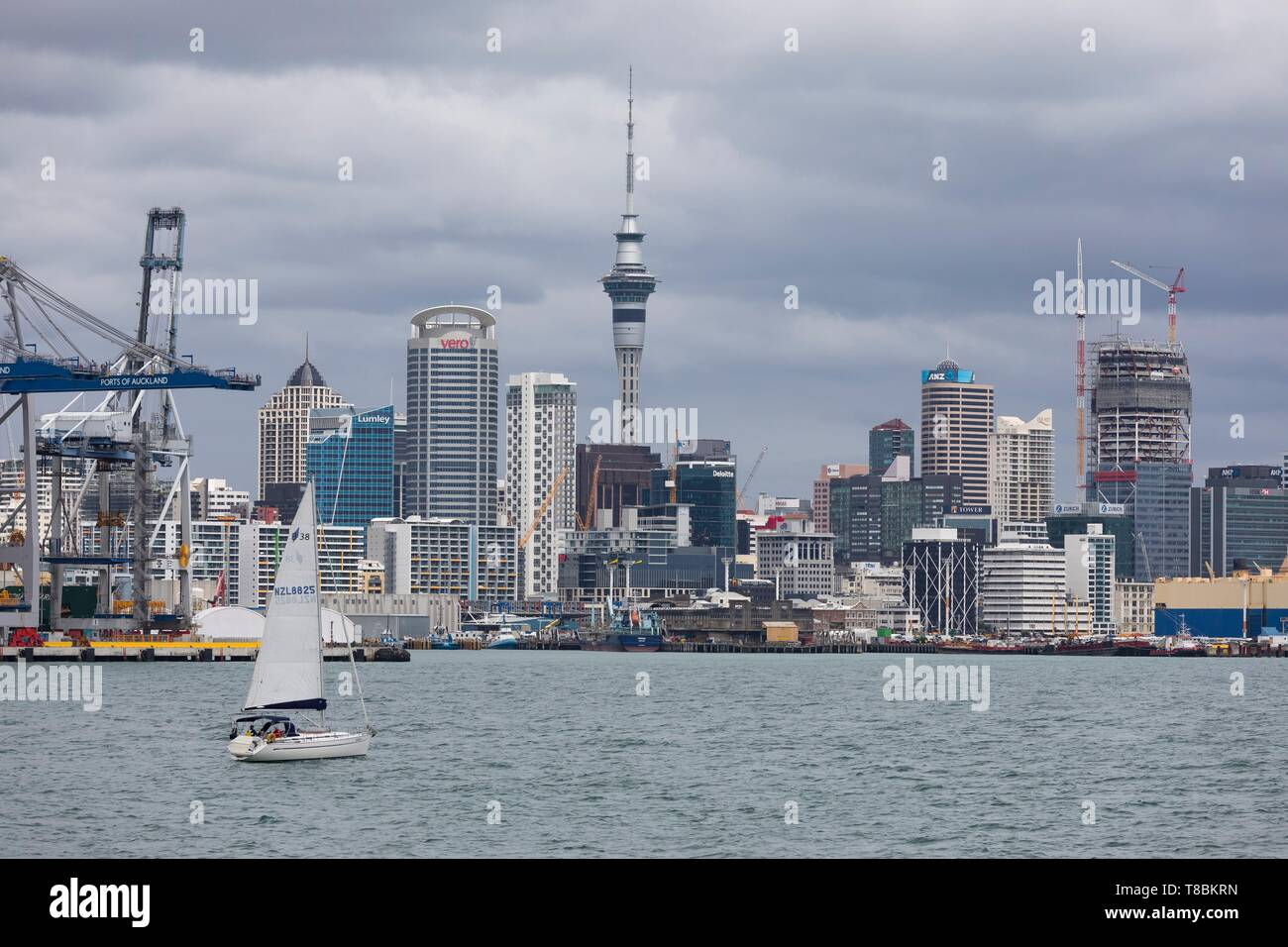 New Zealand, North Island, Auckland region, Auckland city - Stock Image
