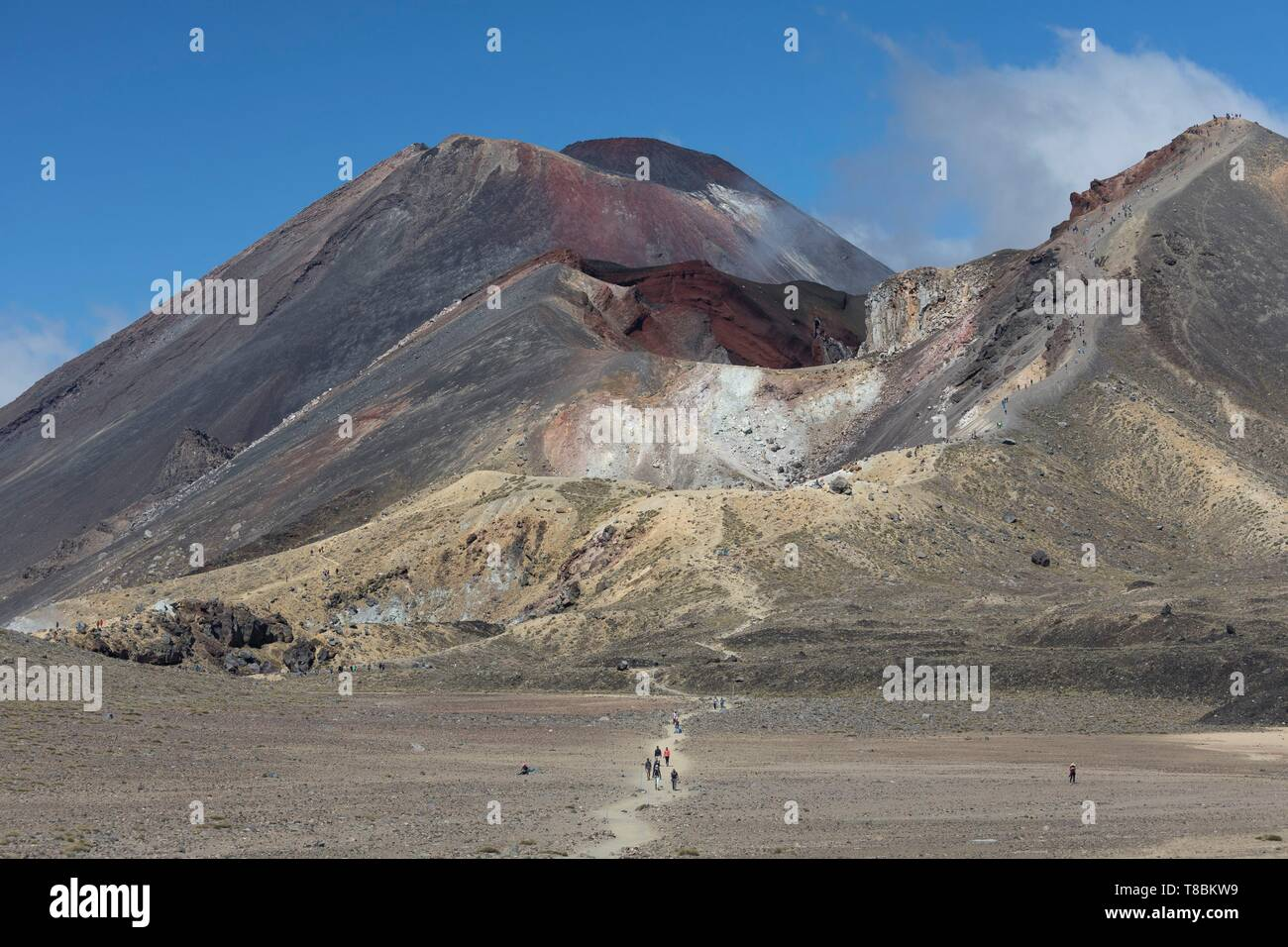 New Zealand, North Island, Waikato region, Tongariro National Park, labelled Unesco World Heritage Site, Tongariro and Ngauruhoe volcanoes - Stock Image