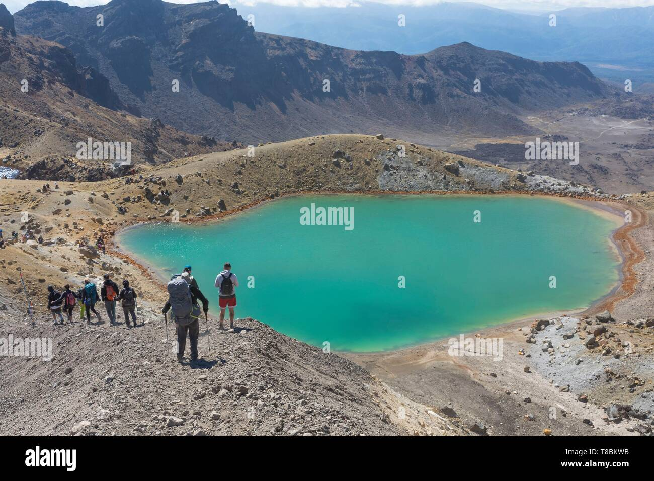 New Zealand, North Island, Waikato region, Tongariro National Park, 1967 m, labelled Unesco World Heritage Site, hikers on the Tongariro Alpine crossing near Emerald Lake - Stock Image