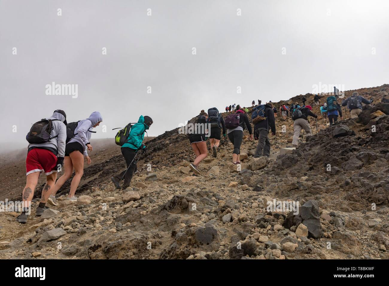 New Zealand, North Island, Waikato region, Tongariro National Park, 1967 m, labelled Unesco World Heritage Site, hikers on the Tongariro Alpine crossing - Stock Image