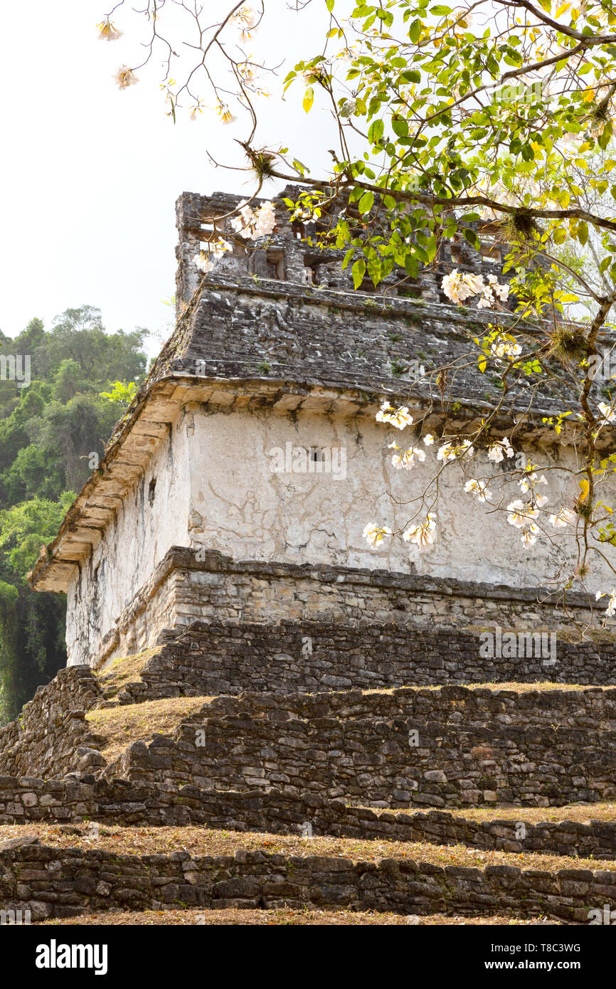 Palenque Mexico - Temple of the Sun, part of the Temple of the Cross Complex in the Maya ruins UNESCO World Heritage site, Palenque Latin America - Stock Image