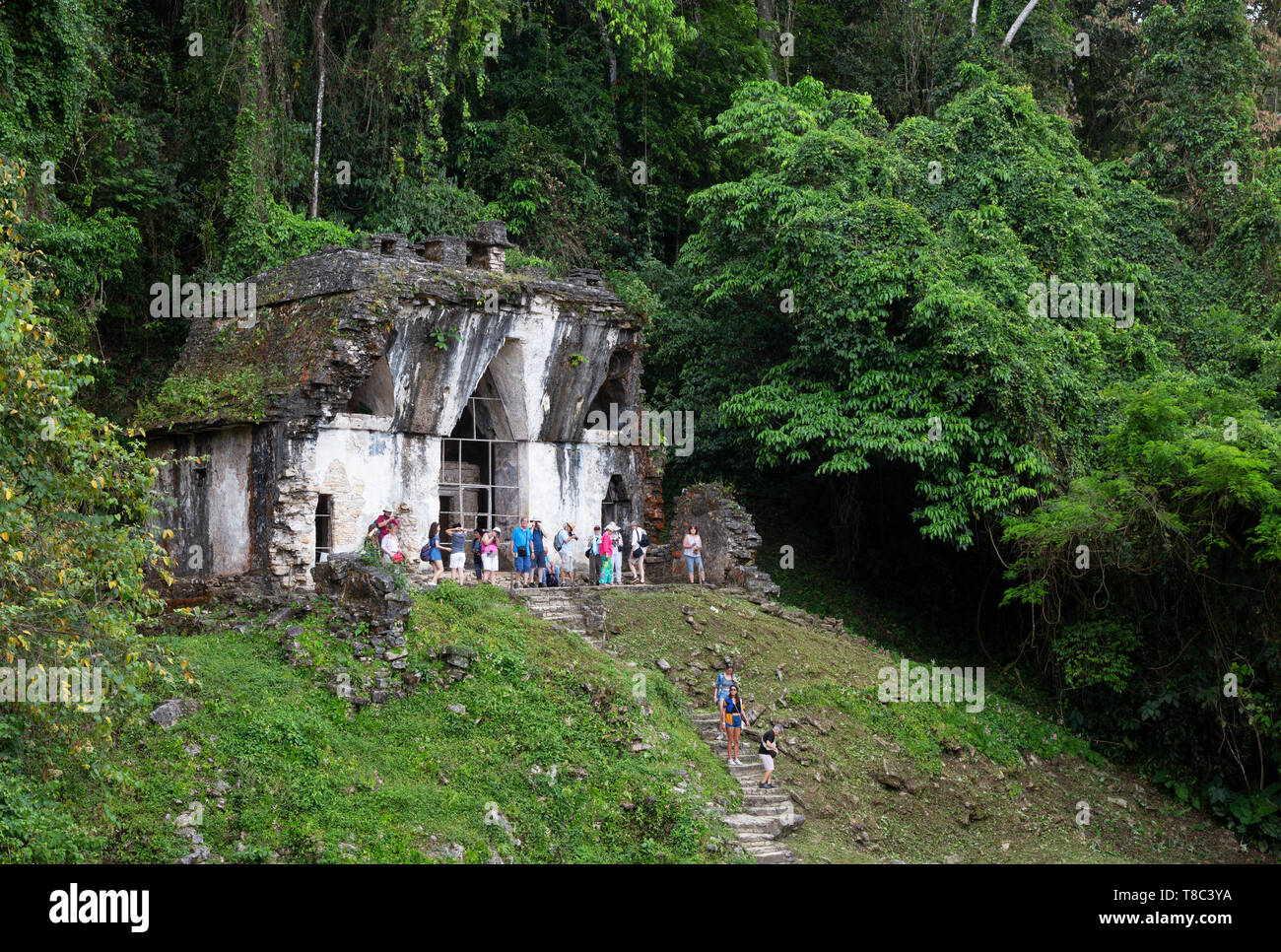 Mexico tourism - tourists visiting the Temple of the Foliated Cross, part of the Temple of the Cross Complex, ancient Maya ruins, Palenque Mexico - Stock Image