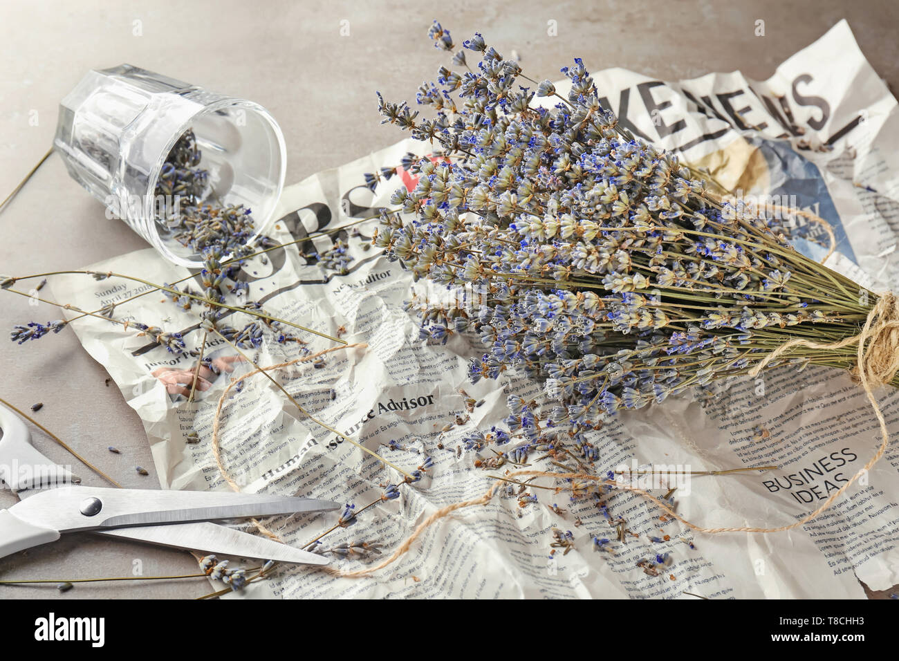 Bunch of beautiful blooming lavender flowers on crumpled newspaper - Stock Image