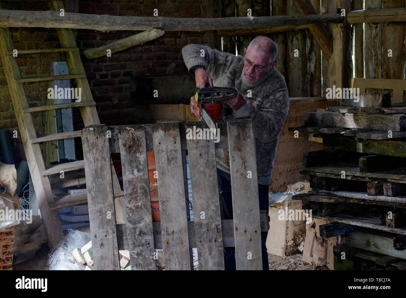 man using a chainsaw in a barn to cut up old wooden pallets for fuel in preparation for the approaching winter season zala county hungary Stock Photo
