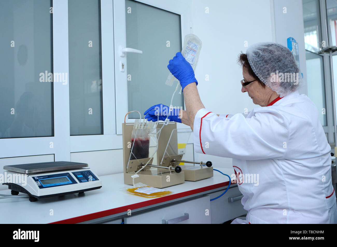 Nurse holding containers with blood to extract plasma on a plasma extractor. Lab of the City blood transfusion station. April 5, 2019. Kiev, Ukraine - Stock Image