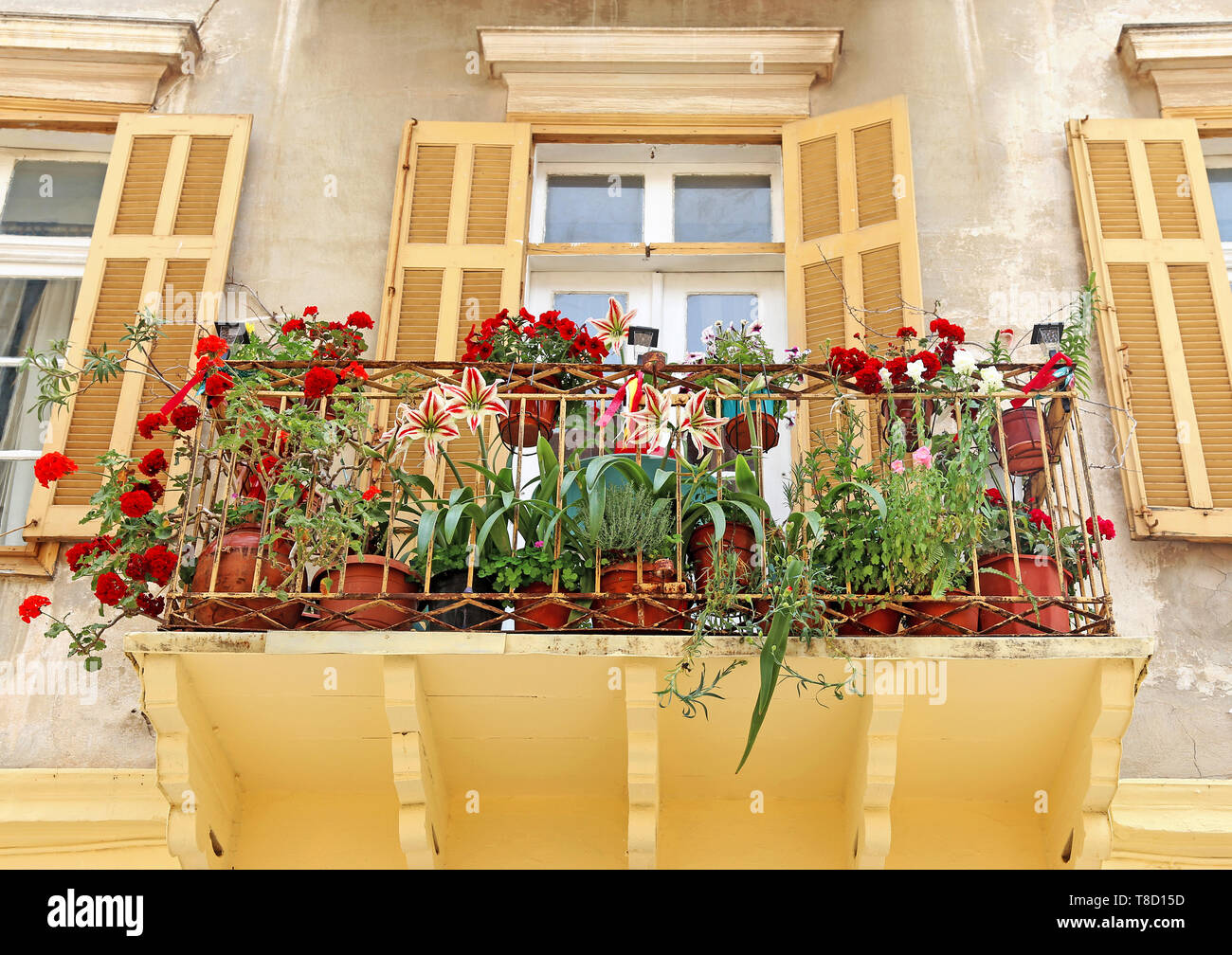 traditional houses and balcony with blooming flowers at Nafplio Argolis Greece - Stock Image