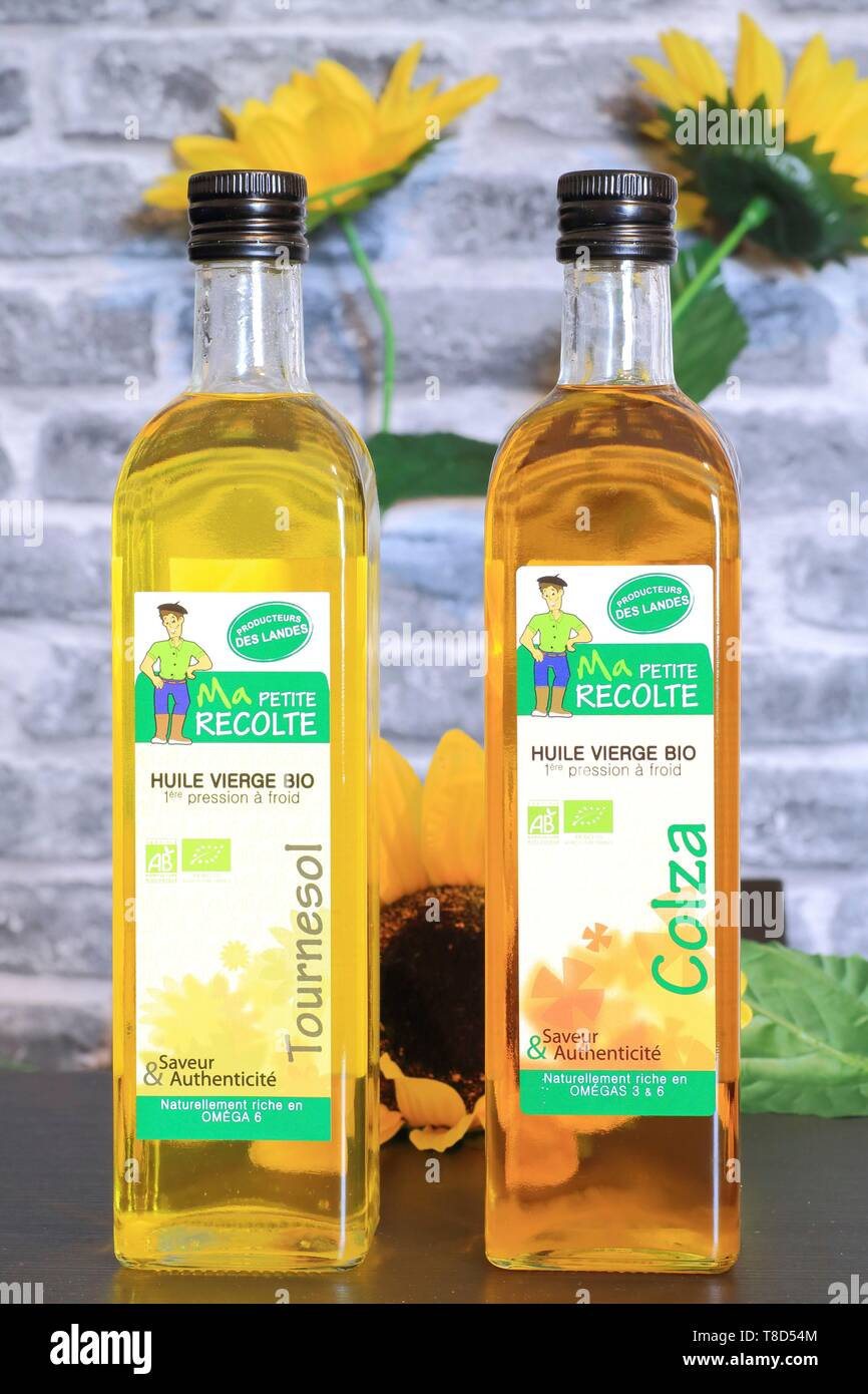 France, Landes, Chalosse, Mugron, organic virgin rapeseed and sunflower oils Ma Petite Recolte - Stock Image