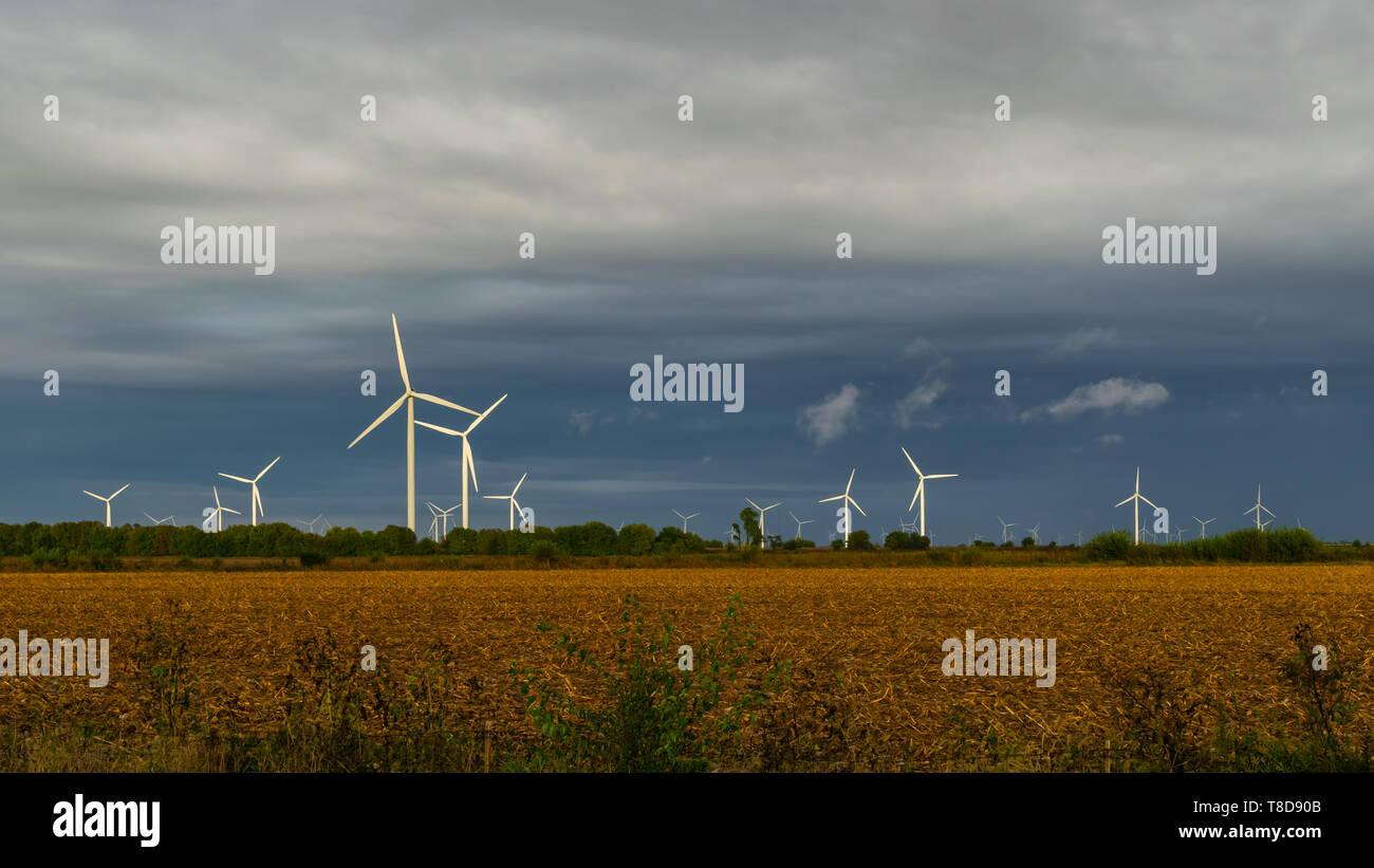 Wind Turbine Farm in an open field - Stock Image