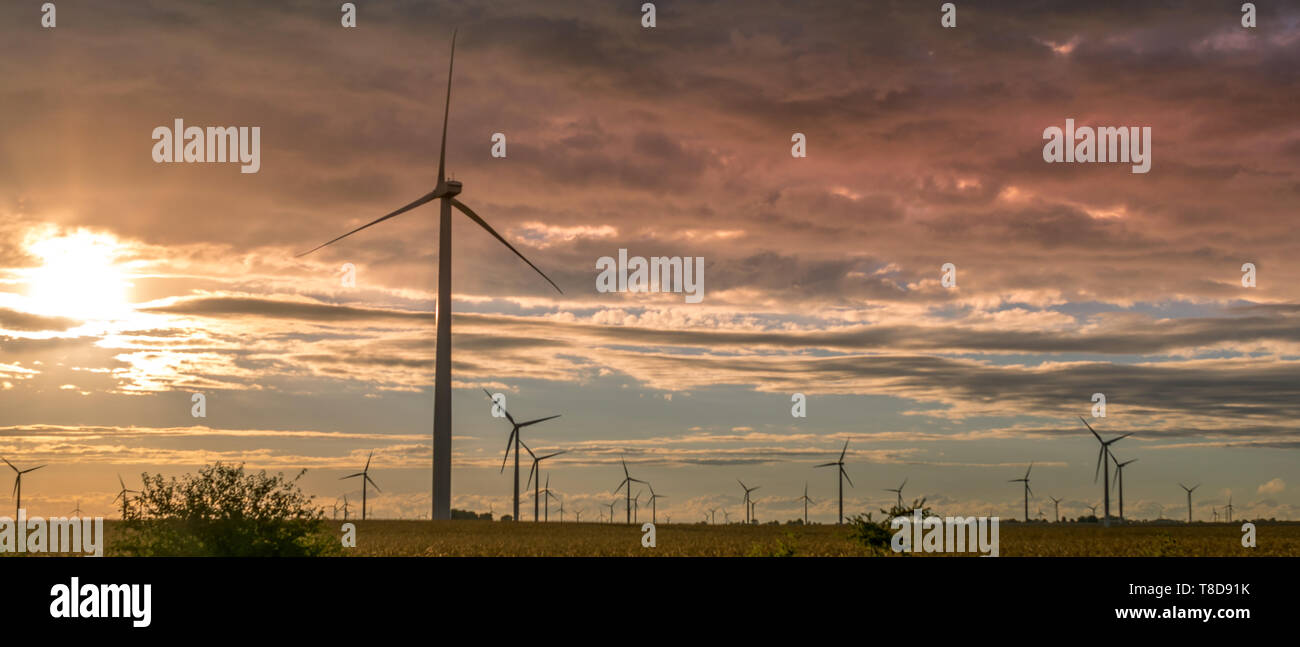 Wind Turbine in Northwest Indiana in a Corn Field during the sunset. - Stock Image