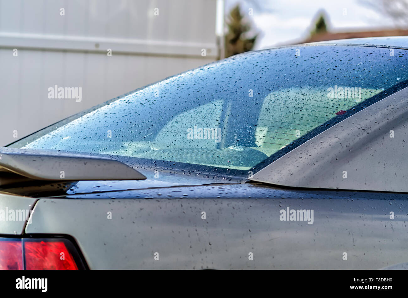 Tiny water drops/droplets sticking to the body/rear windshield of a Ford Mustang GT Coupe, after a summer storm. - Stock Image