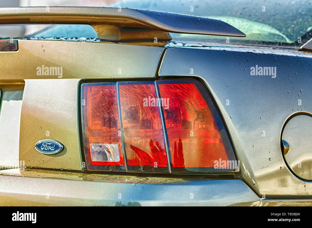 The right rear profile of a rain washed Ford Mustang GT Coupe. Rear spoiler, tail lights, Ford Logo, and the fuel lid on the car are visible. - Stock Image