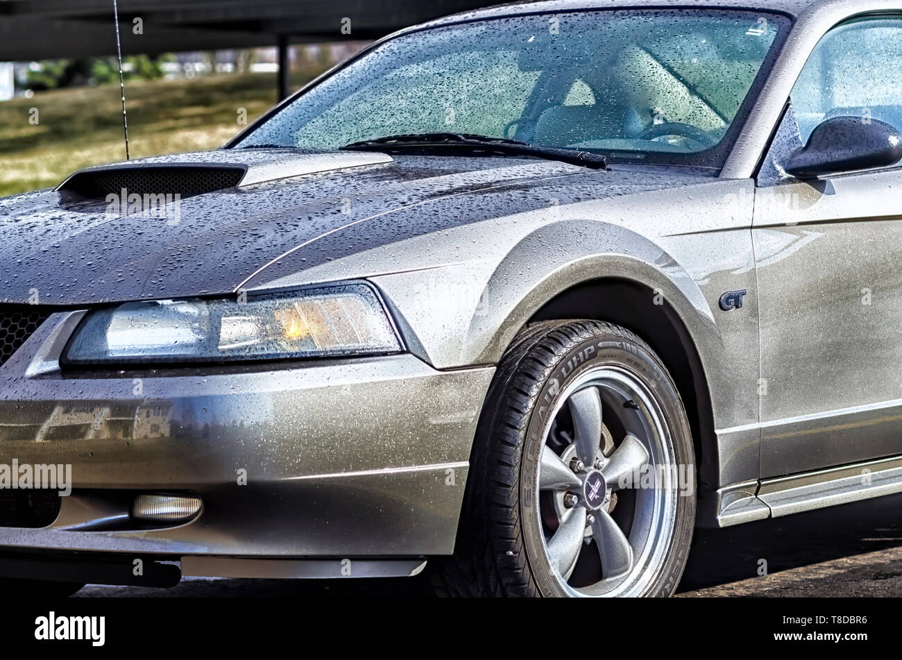 A 2001 Ford Mustang GT Coupe glistening in the sun after a summer storm. Glistening water droplets cover the body of the sports car. - Stock Image