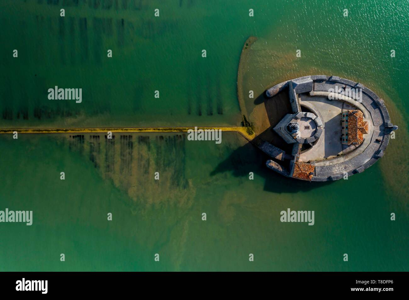 France, Charente-Maritime, Bourcefranc-le-Chapus, Fort Louvois, the construction of Fort Louvois or fort Chapus was conducted from 1691 to 1694 according to the principles of military architecture redefined by Vauban (aerial view) (aerial view) - Stock Image