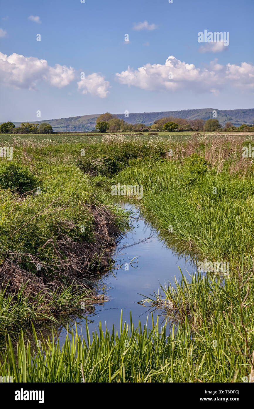 Along the Downs Link, West Sussex - Stock Image