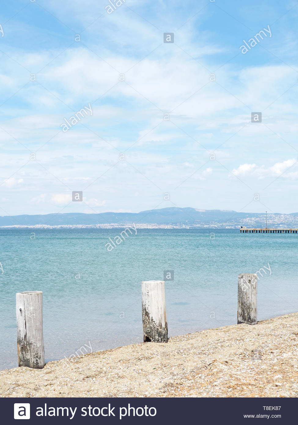 Three wooden trunks vertical at the beach - Stock Image