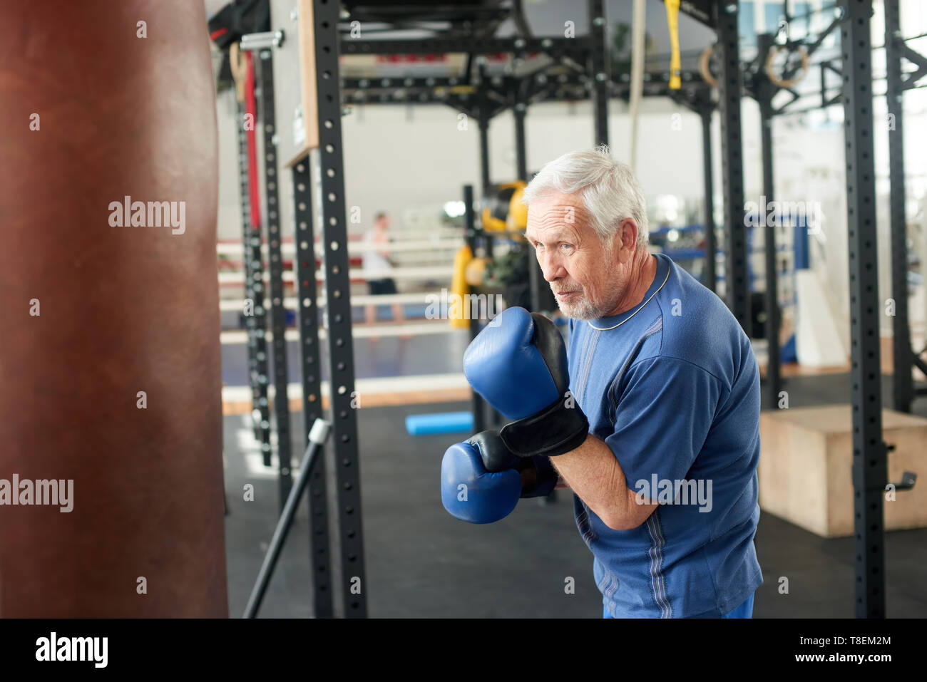 Senior male boxer ready to fight. Senior boxer in gloves boxing in gym. - Stock Image
