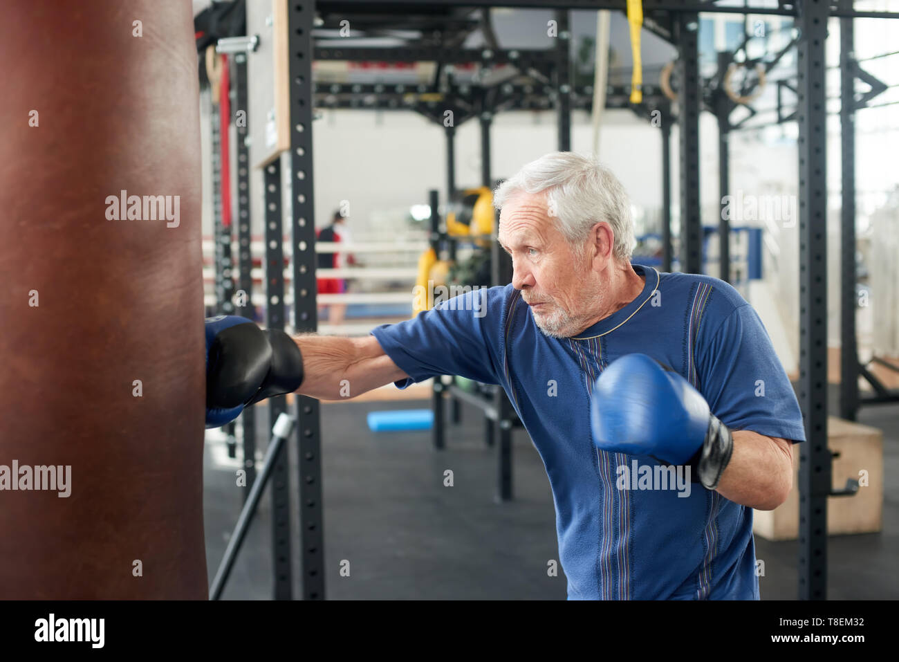 Elderly male person practicing box in gym. Healthy senior man in sportswear and blue gloves boxing punching bag in gym. - Stock Image
