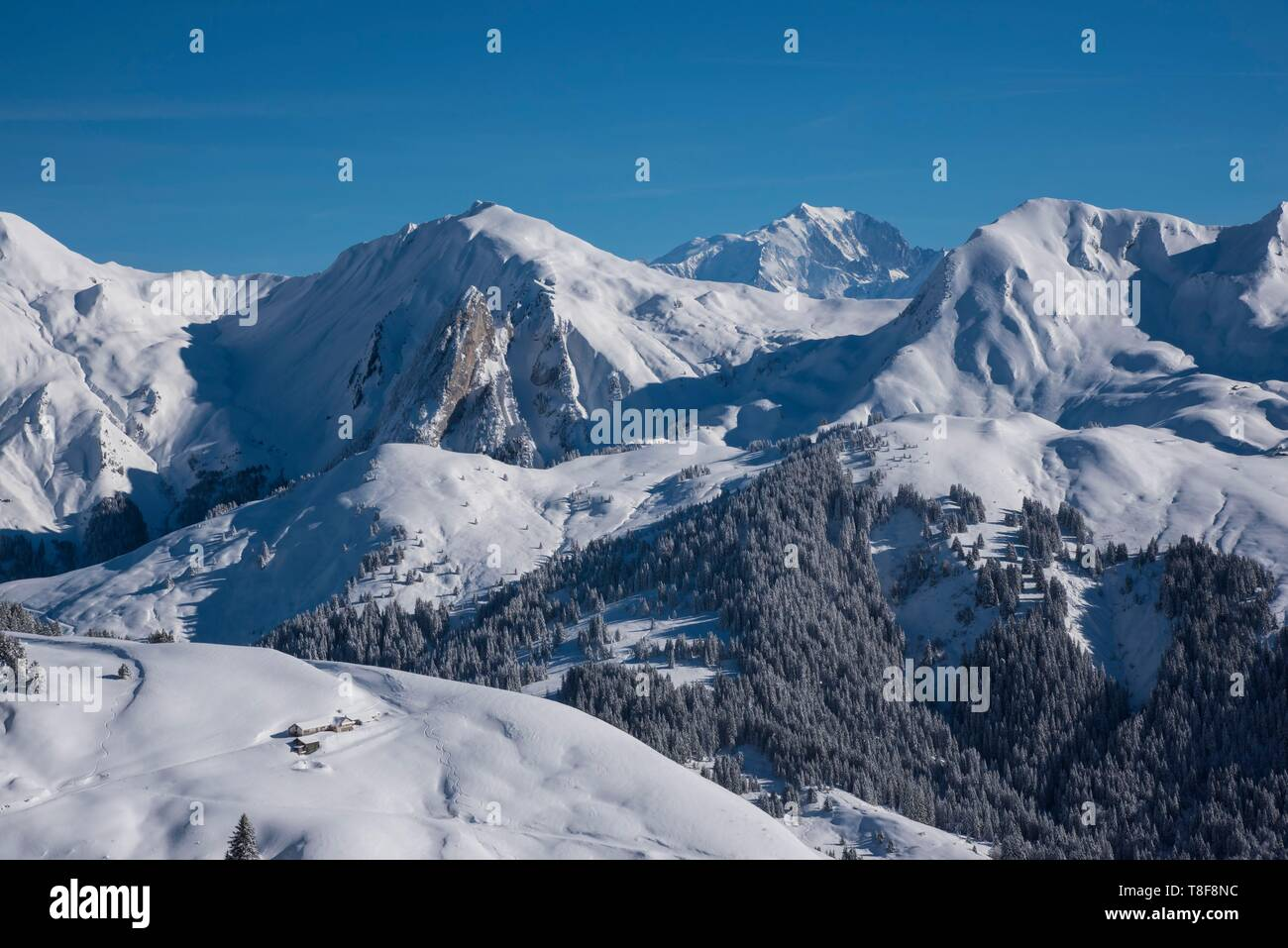 France, Haute Savoie, Aravis massif, Manigod, hiking at Mont