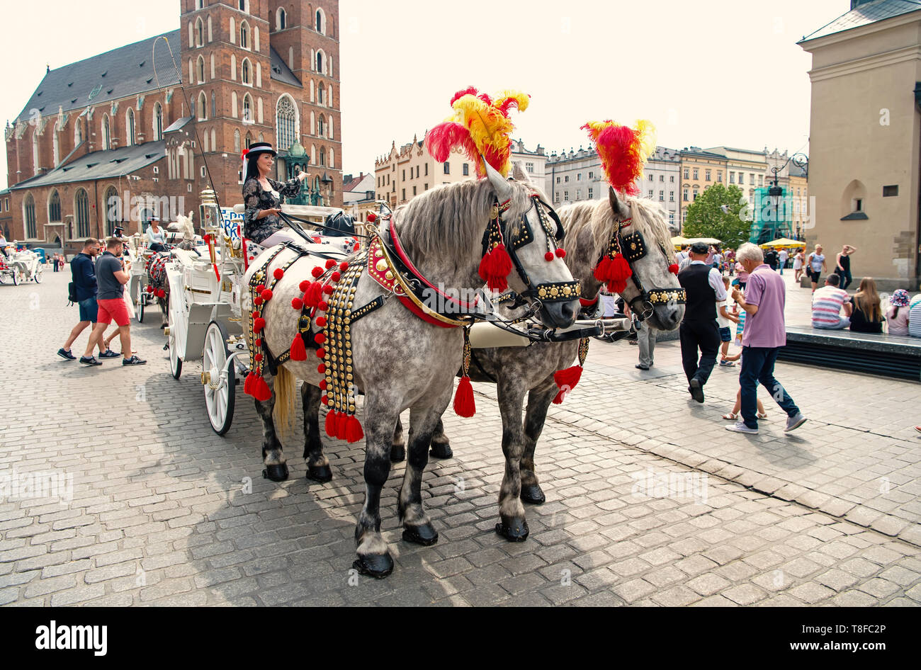 Krakow, Poland - June 04, 2016: girl rider invite to horse carriage ride in city square. Vacation, tour, travelling, discovery concept - Stock Image