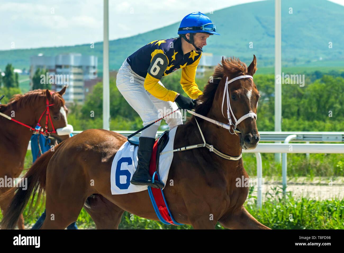 Horse racing in Pyatigorsk,Caucasus,Rusia. - Stock Image