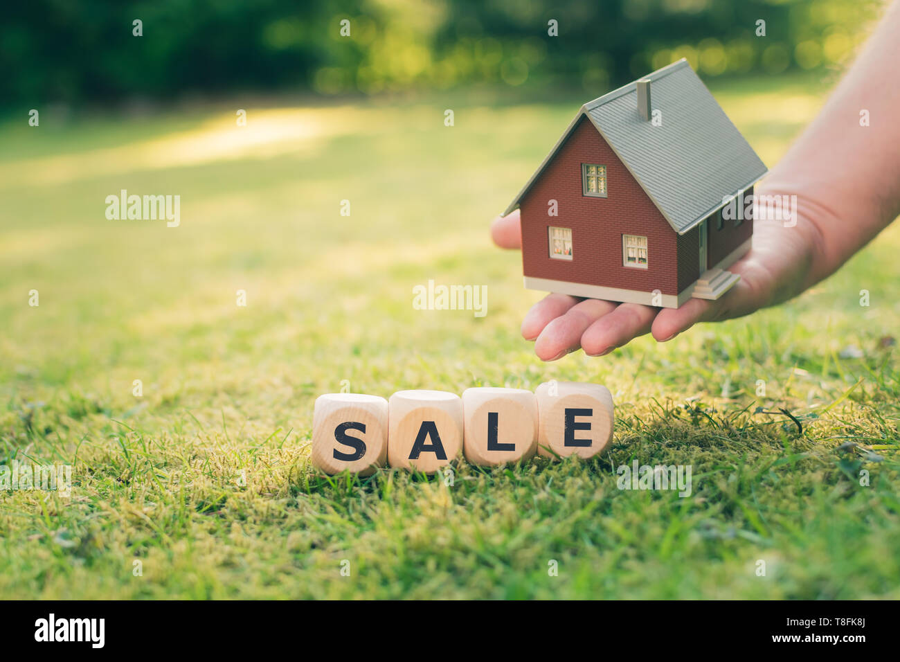 Concept for a house on sale. A hand holds a model house above a meadow. Dice form the word 'sale'. - Stock Image
