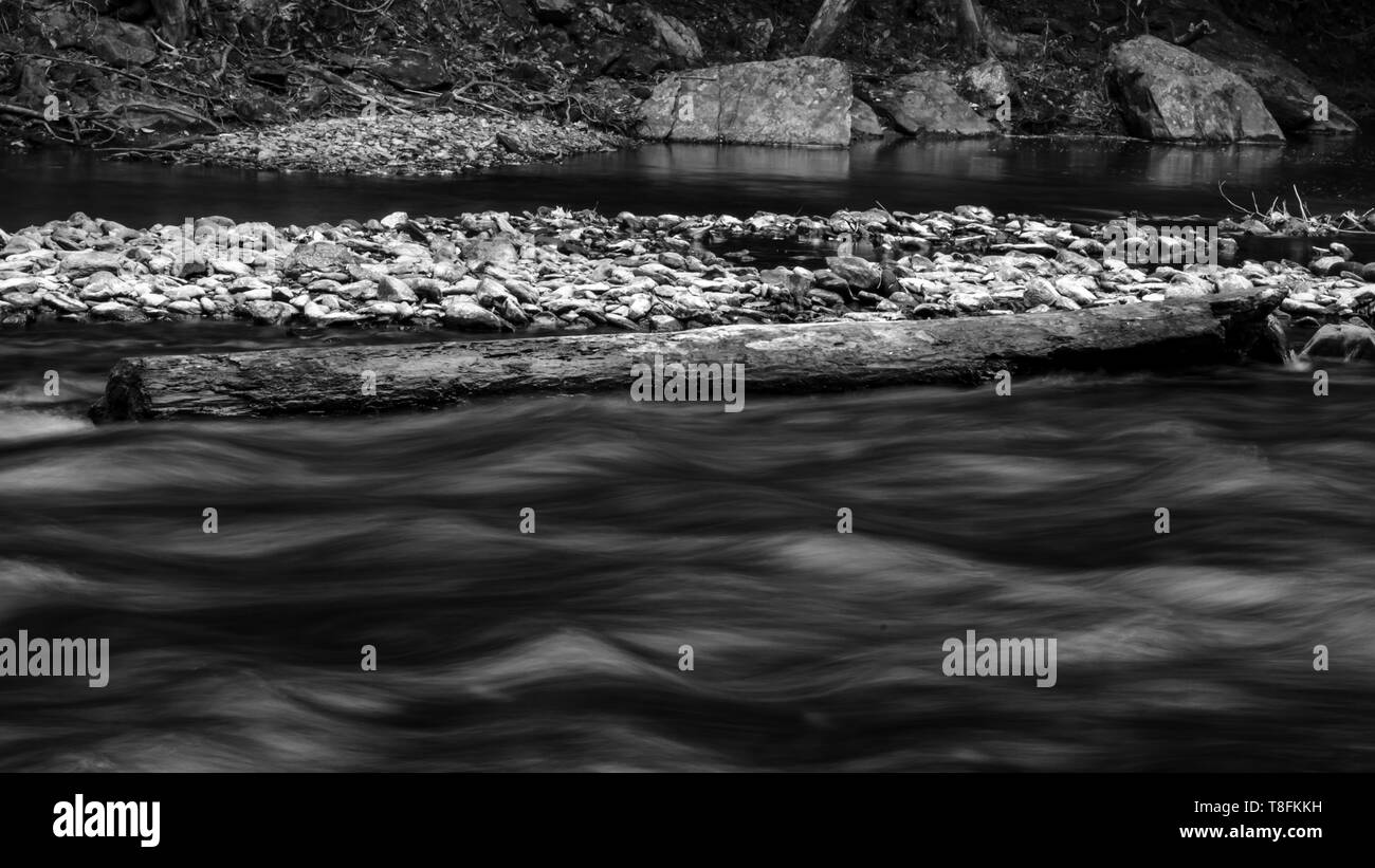 The eb and flow of a rain forest creek Far North Queensland - Stock Image