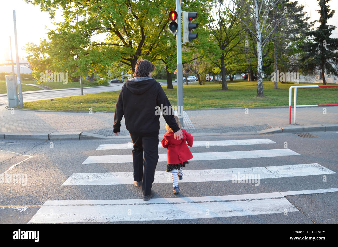 A man and a small child on a zebra crossing trespassing by crossing  the street on red flashing lights. Father is wearing black clothes, the girl has  - Stock Image