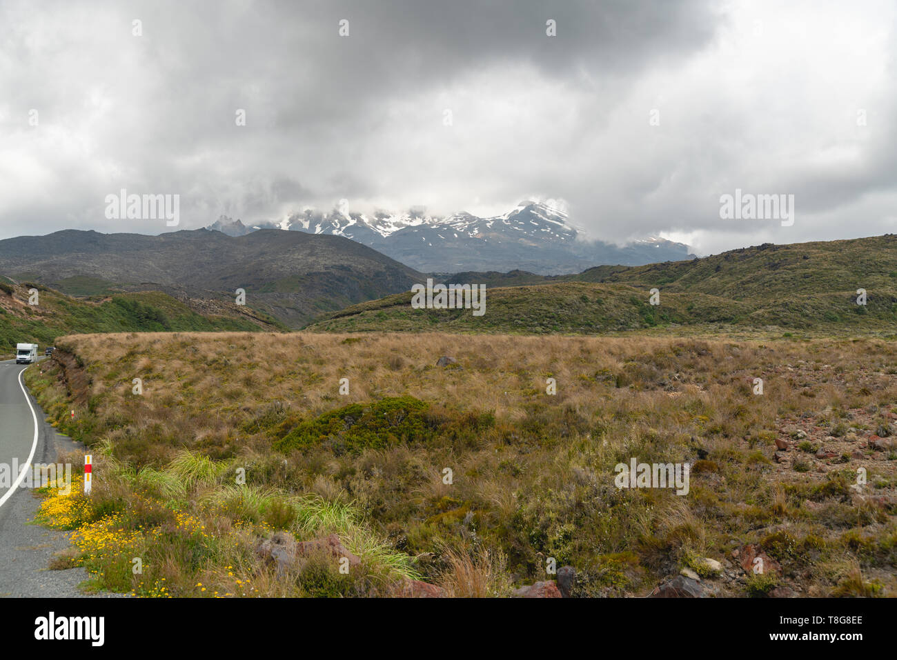On The Road to Mount Ruapehu, Tongariro National Park, North Island of New Zealand - Stock Image