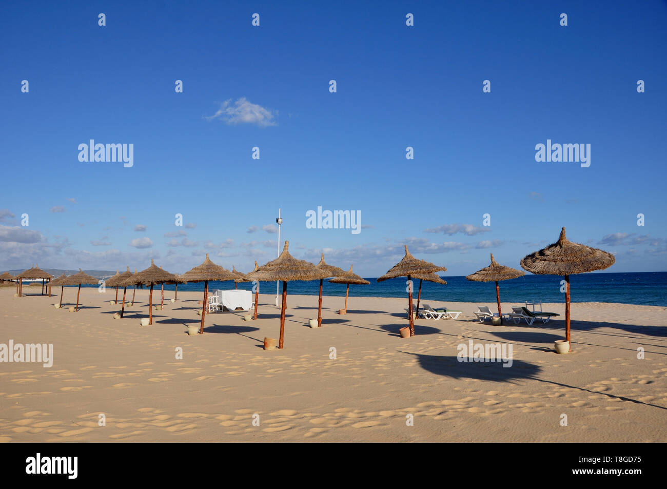 Tunesia: Empty tourist beach at Yasmine Hamamet - Stock Image