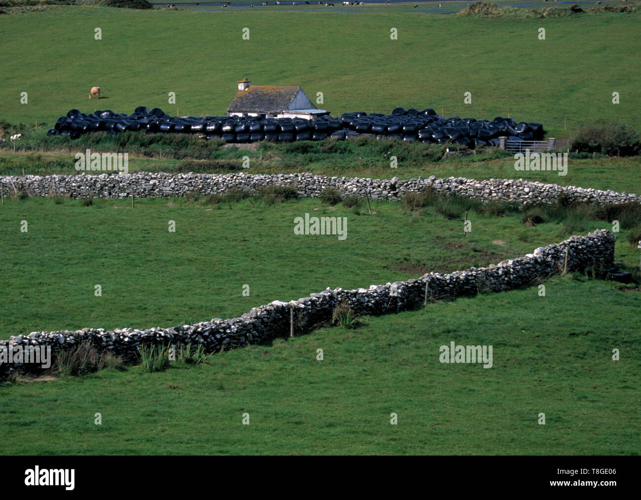 small rural farming holding , county clare, ireland - Stock Image