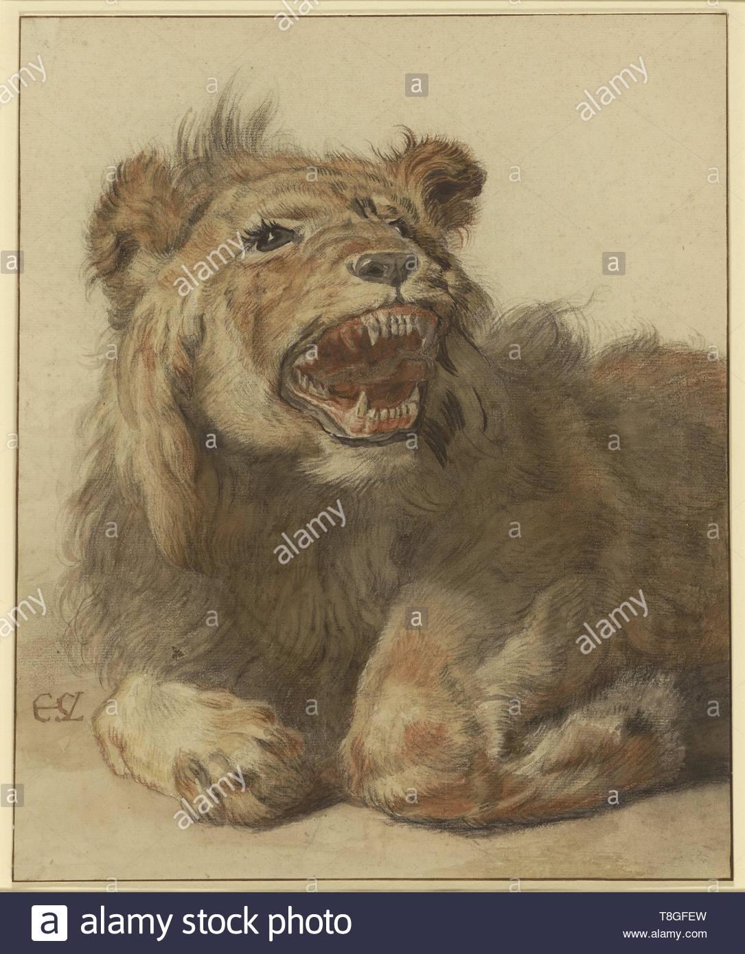 Cornelis Saftleven (Dutch, 1607 - 1681)-A Lion Snarling - Stock Image