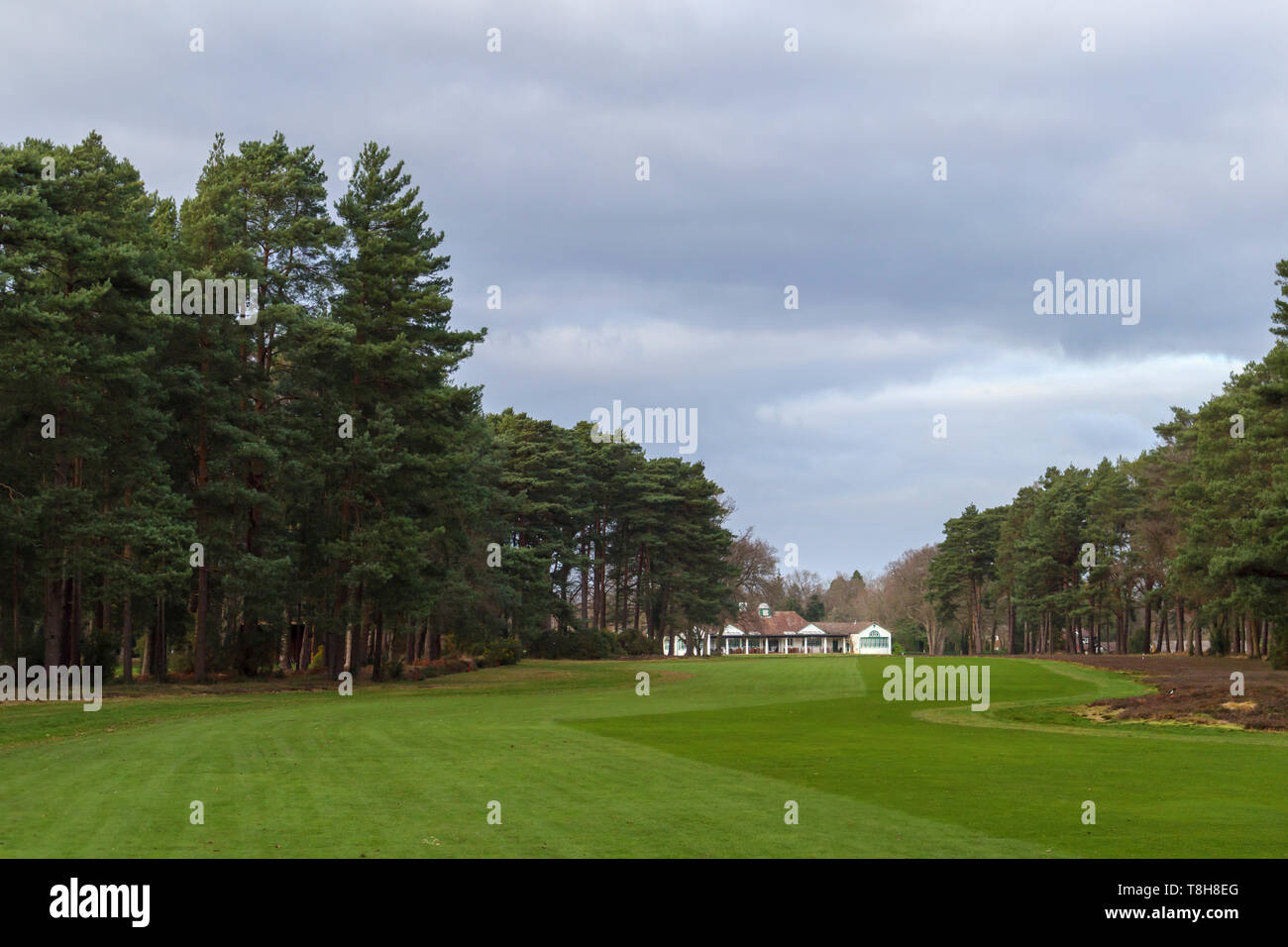 View of Woking Golf Club and the clubhouse in Hook Heath, Woking along the fairway on a cloudy day with overcast sky - Stock Image