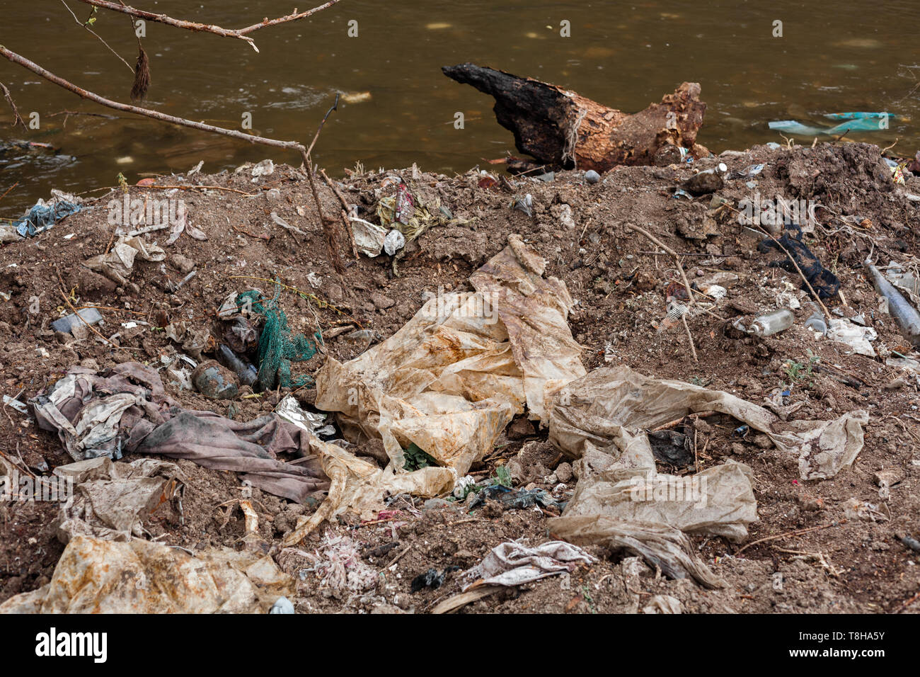 Plastic garbage fields on the bank of river in Ukraine. Ecological catastrophe on the riverside. - Stock Image