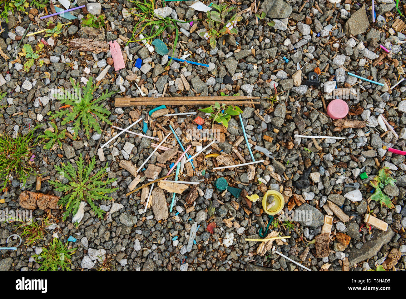 Garbage on the beach near the big city. Used dirty plastic sticks and other garbage. Environmental pollution. - Stock Image
