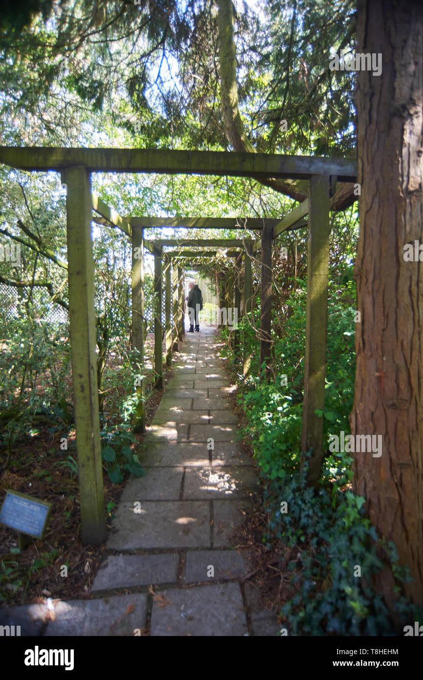 Burnby Hall Gardens, Pocklington, East Yorkshire, England, UK, GB, - Stock Image