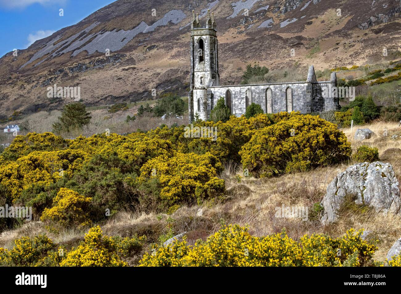 Ireland, County Donegal, Dunlewy, the 1840 abandoned church at the foot of Mount Erigal in the Glenveagh National Park - Stock Image