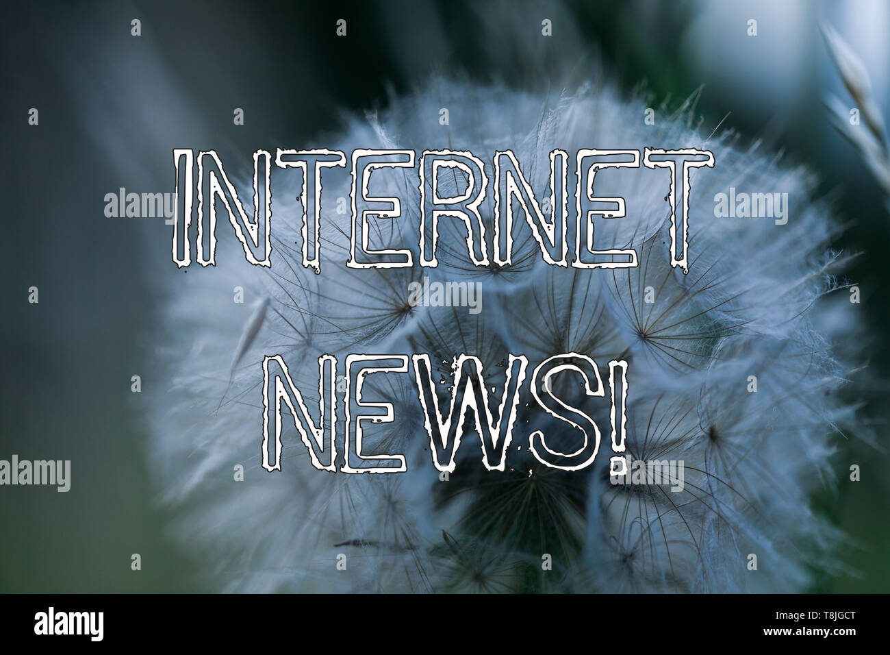 Word writing text Internet News. Business photo showcasing the information about current events published online - Stock Image