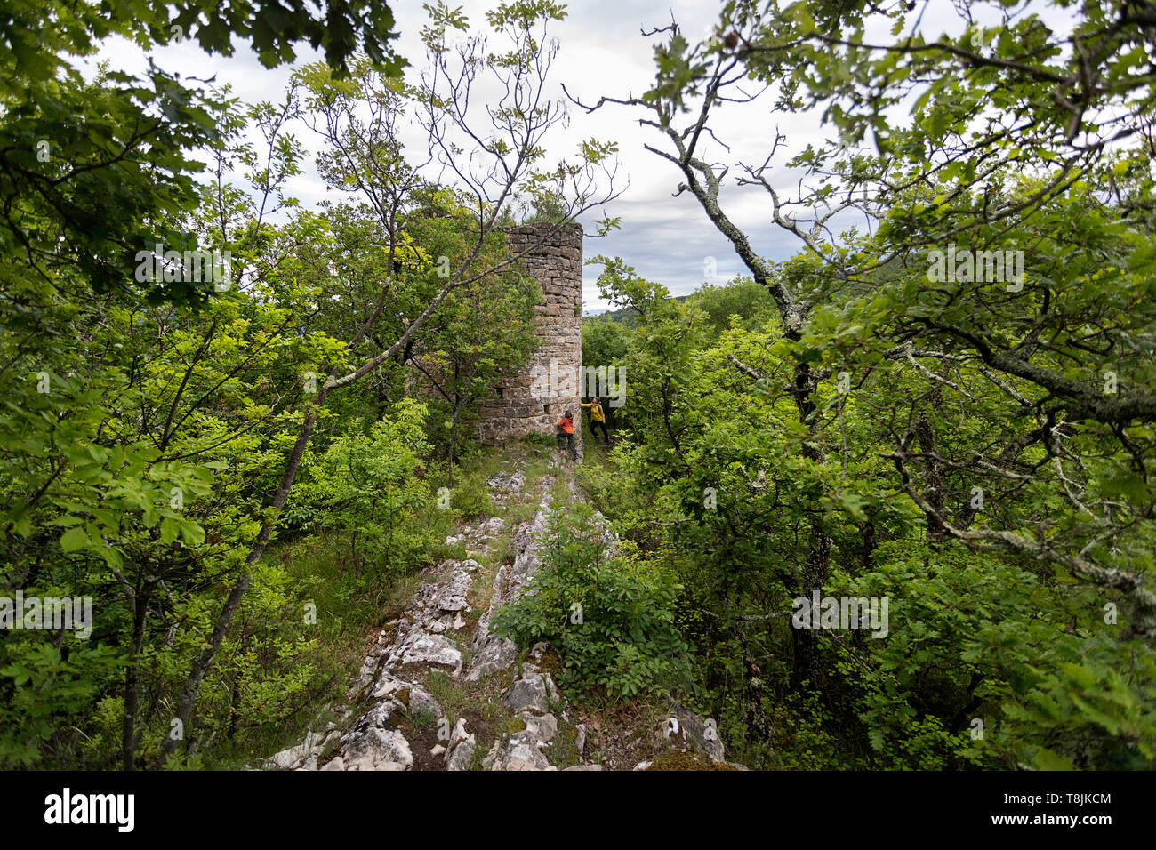 Mother and son standing by ruins of historic tower in thick green forest. Ruins of old venetian defense stone tower in dense wood. Pasjak, Slovenia - Stock Image
