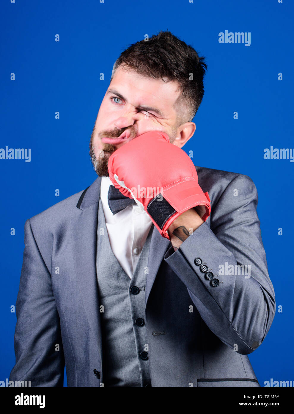 knockout and energy. Fight. Business and sport success. powerful man boxer ready for corporate battle. businessman in suit and bow tie. bearded man in boxing gloves punching. Strength and motivation. - Stock Image
