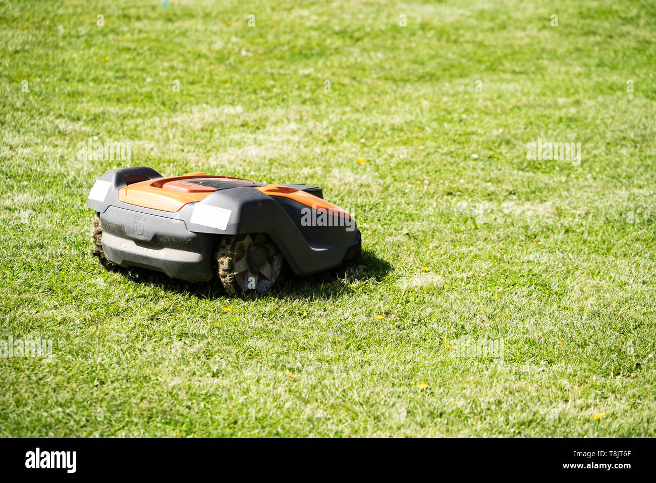 Husqvarna Automower robot lawnmower cutting a lawn, UK - Stock Image